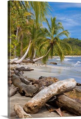 Costa Rica, Limon, Tropics, Caribbean sea, Cahuita National Park, Beach