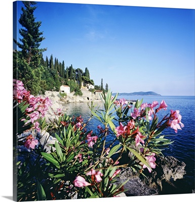 Croatia, Dalmatia, Trsteno, Harbour