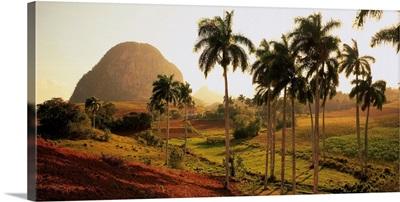 Cuba, Vinales, landscape