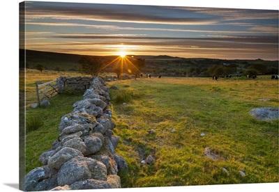 Devon, Dartmoor National Park, Seven Lords Land in Ilsington at sunset