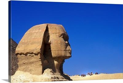 Egypt, North Africa, Cairo, Giza, The Sphinx