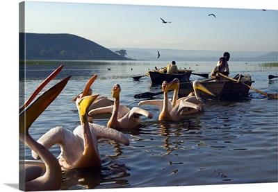 Ethiopia, Awasa lake