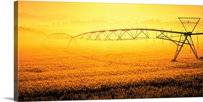 field irrigation, field irrigation