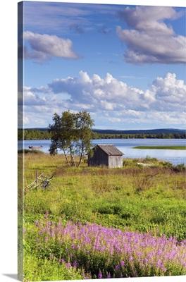 Finland, Lappi, Idyllic landscape near Kilpisjarvi, Arctic Circle, Lapland