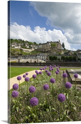 France, Aquitaine, Dordogne, the old town of Terrasson on the Vezere river