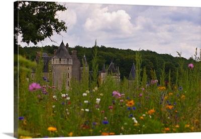 France, Centre, Montpoupon, Loire Valley, Chateau Montpoupon