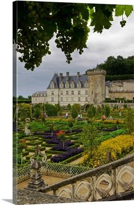 France, Centre, Villandry, Loire Valley, gardens of Chateau de Villandry