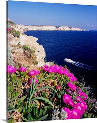 France, Corsica, Bouches de Bonifacio, Capo Pertusato