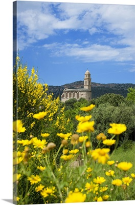 France, Corsica, Mediterranean area, Patrimonio, The church of Santa Maria Assunta