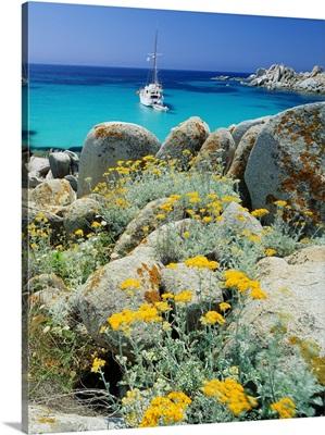 France, Corsica, Parc International Marin des Bouches de Bonifacio, Iles Lavezzi