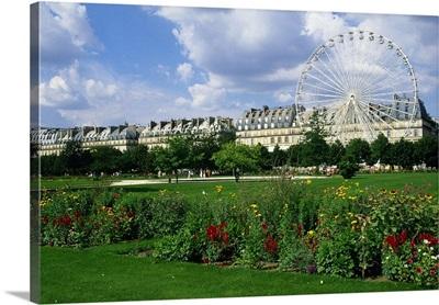 France, Paris, Jardin des Tuileries