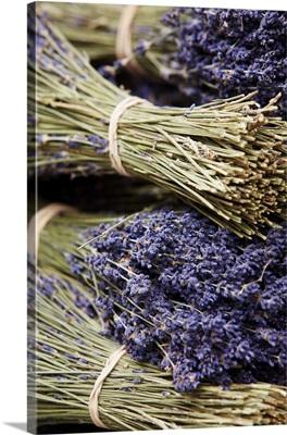 France, Provence-Alpes-Cote d'Azur, Arles, Bouches-du-Rhone, Lavender