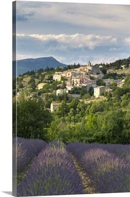 France, Provence-Alpes-Cote d'Azur, Aurel, Provence, Alpes-de-Haute-Provence