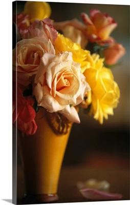 France, Provence-Alpes-Cote d'Azur, La Bastide de Voulonne, vase of roses