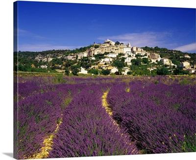 France, Provence-Alpes-Cote d'Azur, Simiane-la-Rotonde