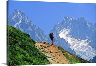 France, Rhone-Alpes, Chamonix, Aiguilles Rouges Nature Reserve