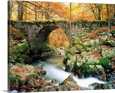 France, Rhone-Alpes, Parc Naturel Regional du Haut-Jura, Valserine stream