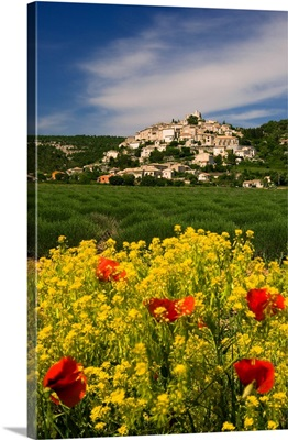 France, Simiane-la-Rotonde, Provence, Alpes-de-Haute-Provence