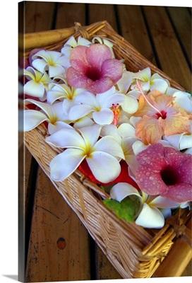 French Polynesia, Society Islands, Moorea island, Helene Spa