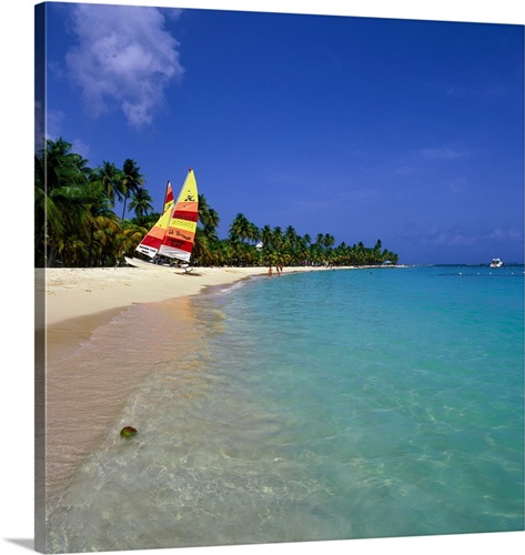 Guadeloupe Beach: French West Indies, Guadeloupe, Caribbean, Caravelle Beach