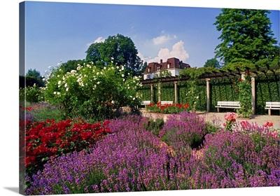 Germany, Baden-Wurttemberg, Baden Baden, The rosengarten