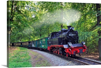 Germany, Mecklenburg-Western Pomerania, Baltic sea, The train Rasender Roland