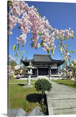 Germany, North Rhine-Westphalia, Dusseldorf, Japanese Garden, Eko House