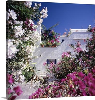Greece, Aegean islands, Cyclades, Tinos island, Pyrgos village, typical architecture