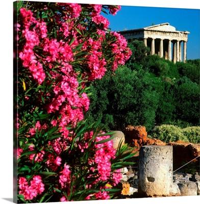 Greece, Athens, Temple of Hephaestus