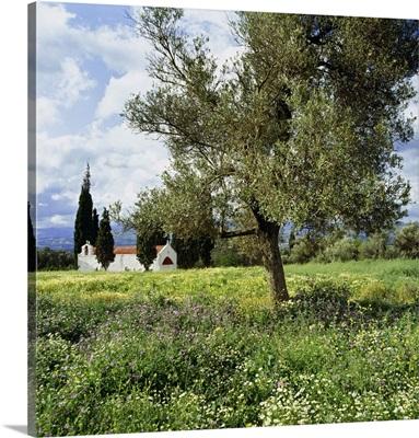 Greece, Crete, Iraklion, Mediterranean sea, Typical little church in spring