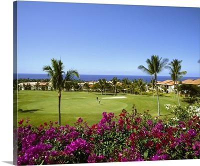 Hawaii, Tropics, Pacific ocean, Big Island, Kona coast, Mauna Loa Village, golf course