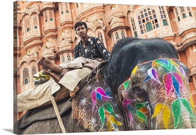 India, Rajasthan, Jaipur, Man and his painted elephant outside Hawa Mahal