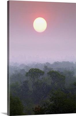 India, West Bengal, Ganges, Sundarbans