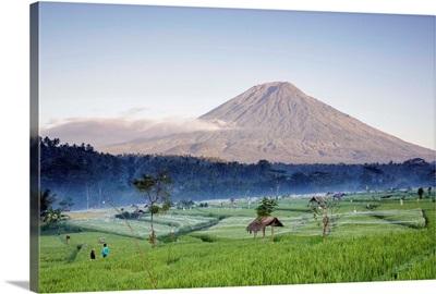 Indonesia, Bali, Mount Agung