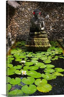 Indonesia, Bali, Ubud town, lotus flowers in Amandari Resort