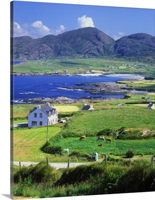 Ireland, Cork, Beara Peninsula, Ballydonegan Bay