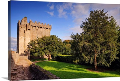 Ireland, Cork, Blarney, Blarney Castle