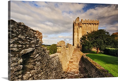 Ireland, Cork, Blarney, Blarney Castle and its famous stone