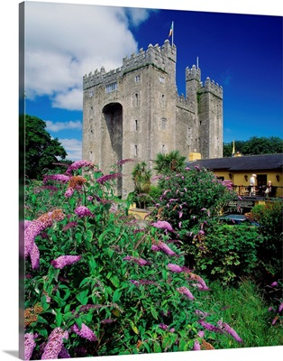 Ireland, County Clare, Bunratty Castle near Limerick town