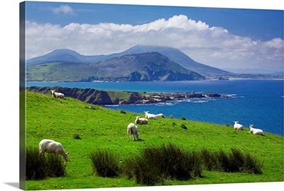 Ireland, Donegal, Inishowen Peninsula, landscape near Pollan Bay