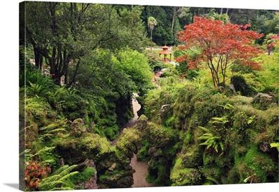 Ireland, Wicklow, Enniskerry, The Powerscourt Estate japanese gardens