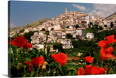 Italy, Abruzzo, Gran Sasso National Park, L'Aquila district, Poppies and town