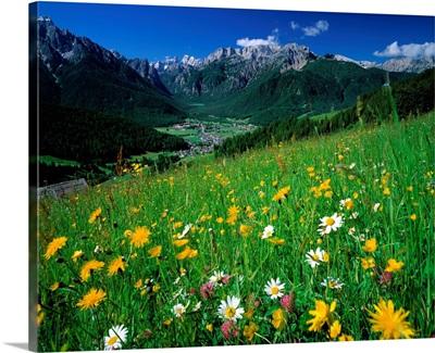 Italy, Alto Adige, view of Croda Rossa and the city of Val Pusteria