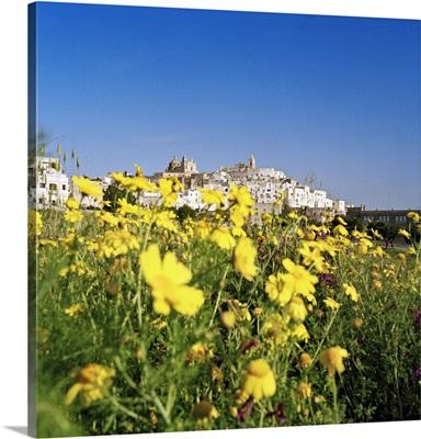Italy, Apulia, Mediterranean area, Itria Valley, Ostuni