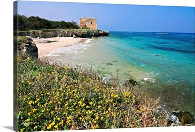 Italy, Apulia, Salentine Peninsula, Salento, Adriatic sea, Old tower over the beach