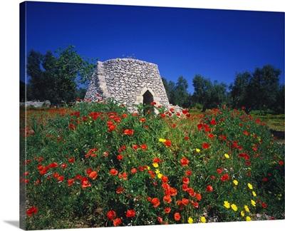 Italy, Apulia, Stone house near Otranto