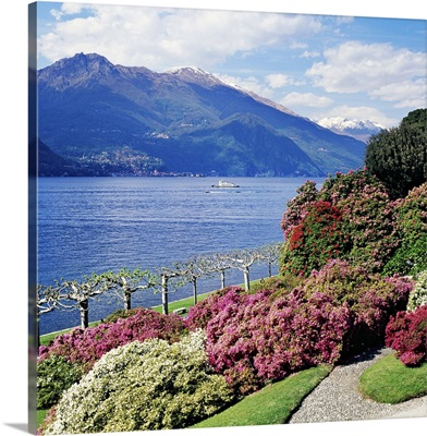 Italy, Bellagio, Como district, Villa Melzi, park with rhododendron on lakeside