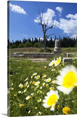 Italy, Calabria, Locri Epizefiri archaeological site, Marasa temple