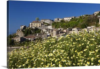 Italy, Calabria, Mediterranean area, Reggio Calabria district, Aspromonte, Gerace