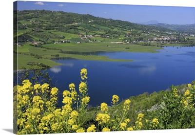 Italy, Campania, Mediterranean area, Avellino district, Conza della Campania, Lake